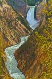 spadać lowe Yellowstone Zdjęcie Stock