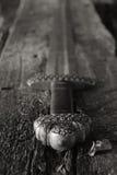 Spada medievale di vichingo contro una parete di legno fotografie stock libere da diritti