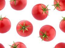 Spada pomidory, Bezszwowa Deseniowa tapeta Obraz Stock