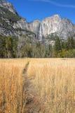 spadać Yosemite fotografia stock