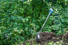 Spade in dirt. Picture from garden, spade in the dirt and lush foliage Stock Photos