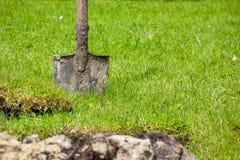 Spade in garden Stock Images