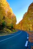spadek autostrada Zdjęcie Royalty Free