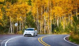 Spadek autostrada Fotografia Stock