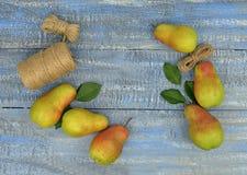 Spadek bonkrety na drewnie Uprawiać ogródek Pojęcie Zdjęcia Royalty Free