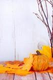 Spadek dekoracje obrazy royalty free