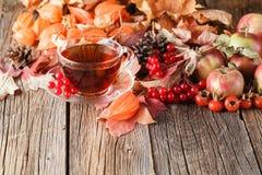 Spadek herbata na nieociosanym drewnianym tle Fotografia Royalty Free