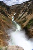 Spadek i rzeka w Yellowstone parku narodowym Obrazy Royalty Free