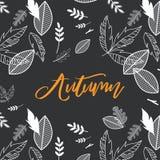 Spadek, jesień sezonu wektorowa ilustracja z doodle spadku tłem Projekt dla plakata, karta, zaproszenie, plakat Ilustracja Wektor