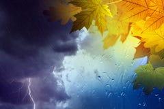 Spadek, jesieni tło fotografia stock