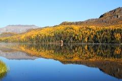 spadek jezioro Obrazy Stock