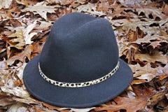 spadek kapelusz Obrazy Stock
