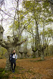 spadek lasu dziewczyna Zdjęcie Stock