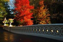 Spadek przy łęku mostem obrazy royalty free