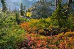 Spadek przy góra piekarzem Zdjęcie Royalty Free