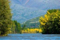 Spadek rzeka Zdjęcia Stock