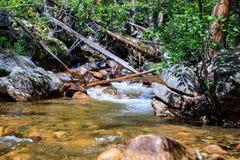 Spadek rzeki Riffle Fotografia Stock