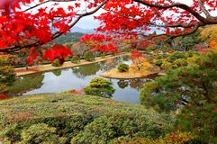 Spadek sceneria piękny W Cesarskiej willi Królewskim parku w Kyoto Fotografia Stock