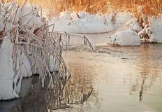 spadek strumienia bełkowiska zima Obraz Stock