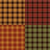 Spadek szkockie kraty Obraz Stock