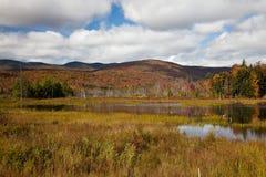 spadek ulistnienie Vermont obrazy stock