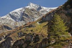 Spadek w Alps, ahrntal WŁOCHY Fotografia Royalty Free
