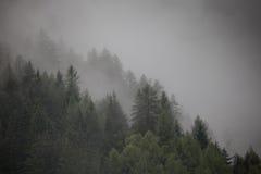 Spadek w Alps, ahrntal WŁOCHY Zdjęcie Royalty Free