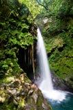 spadek woda lasowa tropikalna Obrazy Royalty Free