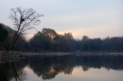Spadków drzew odbicie jezioro Obraz Stock