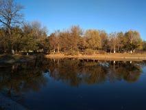 Spadków drzew odbicie jezioro Zdjęcia Stock