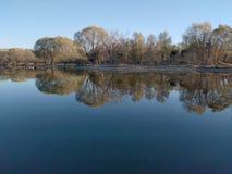 Spadków drzew odbicie w jeziorze Fotografia Stock