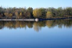 Spadków drzew odbicie w jeziorze Obrazy Royalty Free