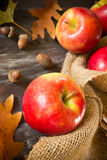 Spadków jabłka Zdjęcia Stock