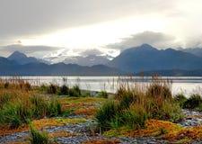 Spadków kolory na mierzei homer, Alaska zdjęcia stock