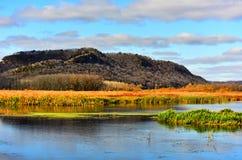 Spadków kolory w Górnym Mississippi schronienia bagna terenie - Nowy Albin, Iowa Zdjęcie Royalty Free
