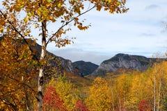 Spadków krajobrazy, Kanada Zdjęcie Royalty Free