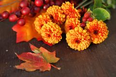 Spadków kwiaty Zdjęcie Stock