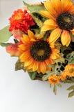Spadków kwiaty Obraz Stock