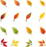Spadków liście, jesień liście, Opuszczają wektory Fotografia Stock