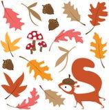 Spadków liście z wiewiórką Zdjęcia Royalty Free
