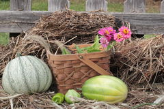 Spadków warzywa w koszu na górze słomy lub siana Obrazy Stock