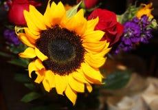 Spadku bukiet z słonecznikiem fotografia royalty free