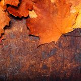Spadku drewniany tło z Czerwonymi i Pomarańczowymi jesień liśćmi Yello Obrazy Stock