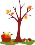 Spadku drzewa ilustracja Zdjęcia Stock