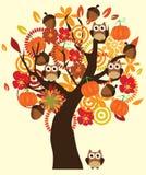 Spadku drzewo Obraz Royalty Free