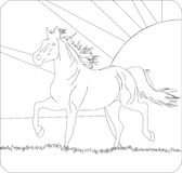 spadku konia bieg Zdjęcia Royalty Free