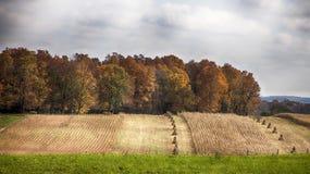 Spadku żniwa krajobraz Obrazy Royalty Free