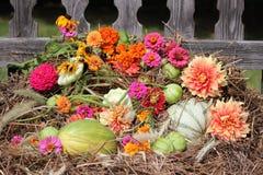 Spadku żniwo z jaskrawymi kwiatami: pomidory, kabaczki, fasole Obrazy Royalty Free