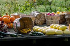 Spadku produkt spożywczy dla sprzedaży przy Indiana gospodarstwa rolnego stojakiem Obrazy Royalty Free