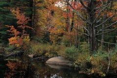 Spadku staw - New Hampshire zdjęcia stock